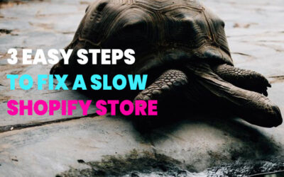 3 Easy Steps to Fix a Slow Shopify Store + Bonus Tips